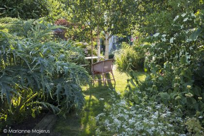 Garden by Posy Gentles